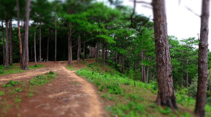 Cung đường Tà Năng-Phan Dũng ngày 1 a