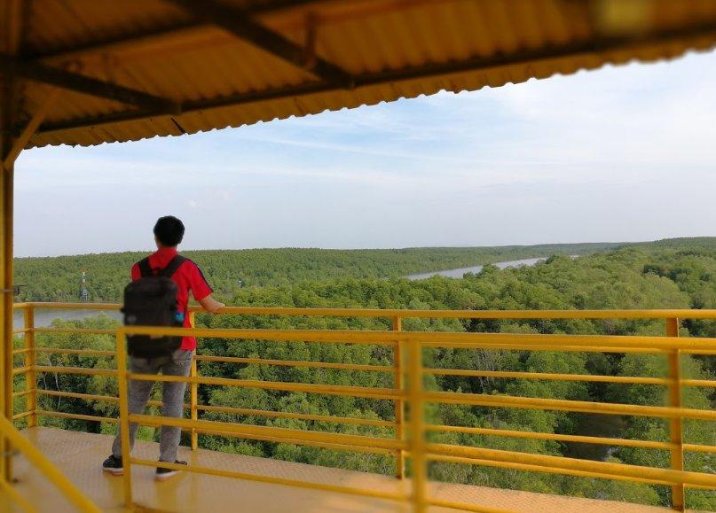 Đài quan sát rừng ở Vàm Sát