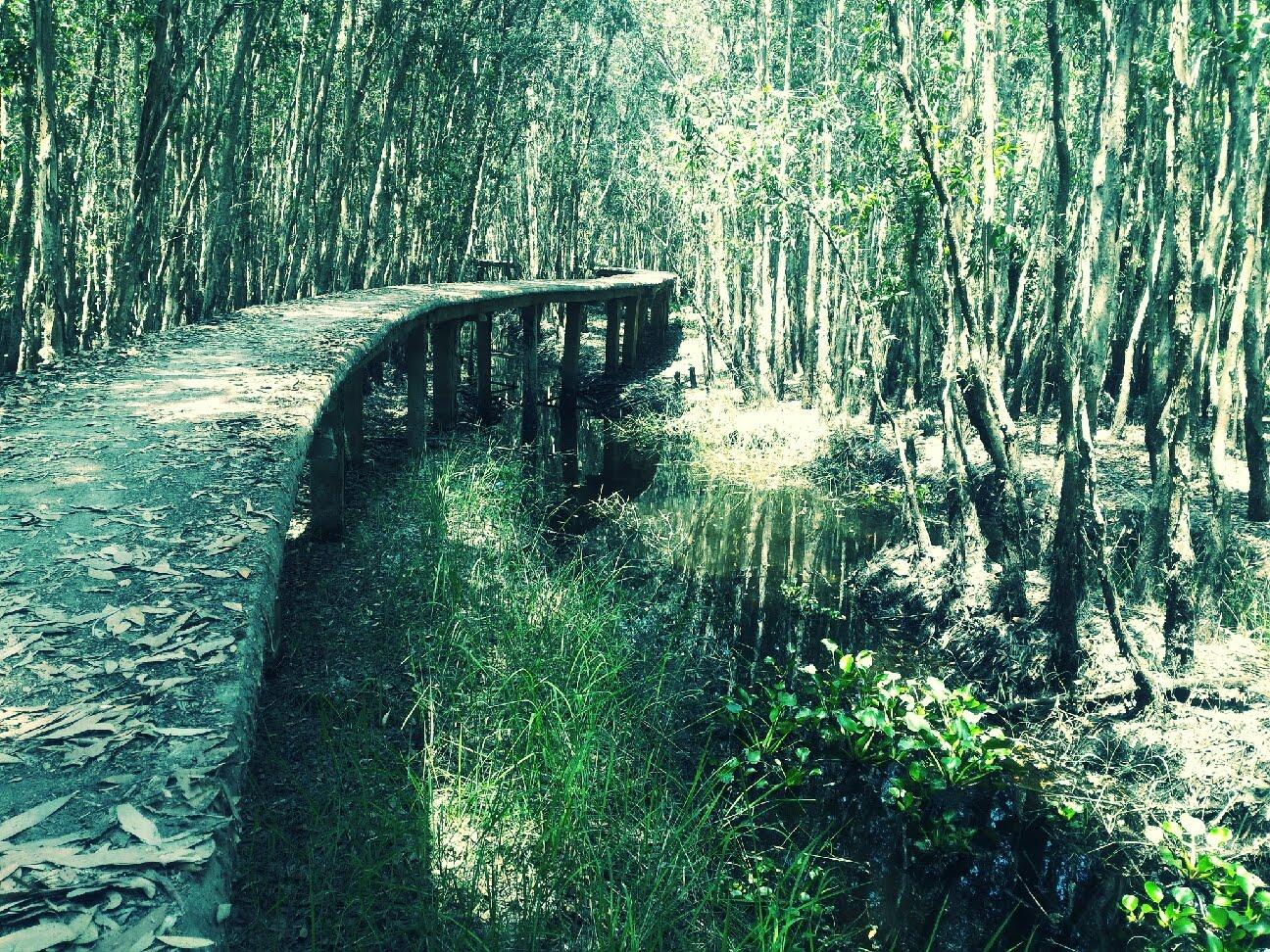làng nổi Tân Lập