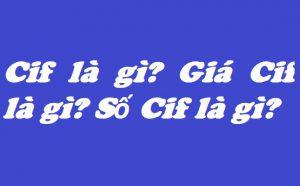 CIF là gì