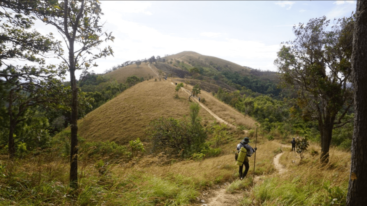 Trekking Cung Đường Tà Năng - Phan Dũng