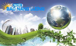 môi trường là gì