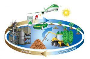 Năng lượng sinh khối là gì