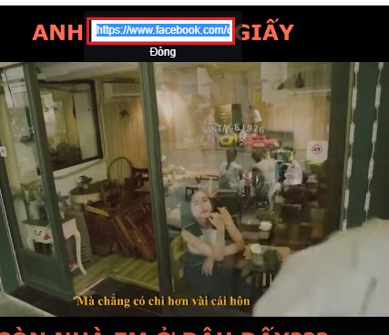 lấy link video facebook
