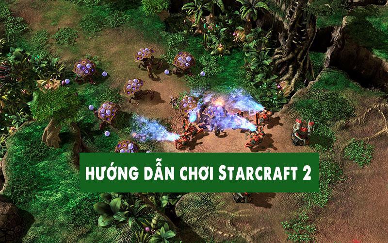Cấu Hình Chơi StarCraft 2